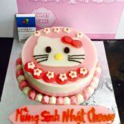 meo-kitty-7